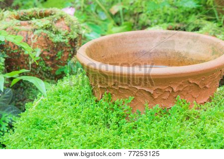 Green Moss Covered Jar