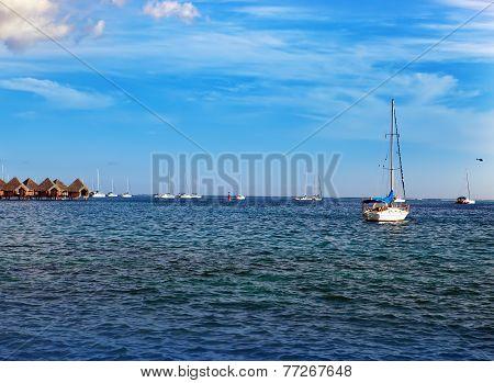 Catamarans and wooden huts at the sea.