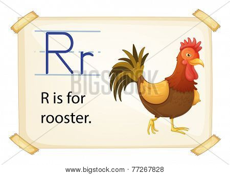 A letter R for rooster on a white background