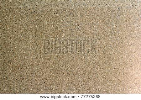 Corkboard Empty Background