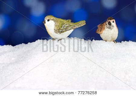 Two Cute Robin On Snow