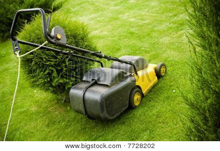 Lawnmower On The Grass
