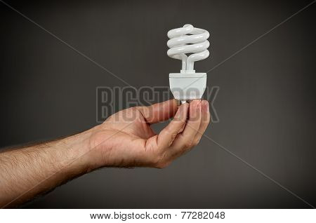Energy-saving Bulb CFL In Hand