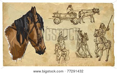 Animals, Theme: Horses - Hand Drawn Vector Pack