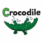 pic of crocodile  - Children illustration of funny alligator or crocodile swims in the small lake and the inscription  - JPG