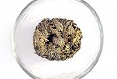 Rose of jericho in dry state (anastatica) pic.