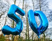 picture of 50th  - Beautiful blue helium balloons for 50th birthday surprise in the woods - JPG