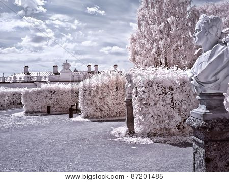 Territory Of Farmstead Kuskovo. Infrared Photo