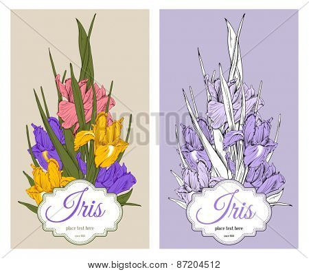 Vintage floral card for invitation or other life events. Hand drawn spring garden flowers irises on beige and violet background. Vector illustration.