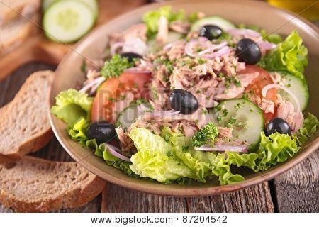 fresh salad with tuna