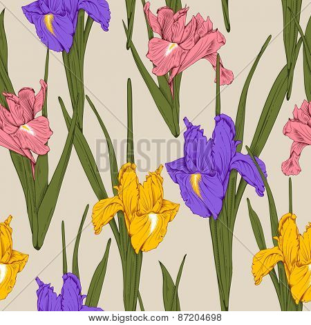 Retro vintage flower seamless pattern with hand drawn yellow, pink and violet irises. Vector. Easy to edit.