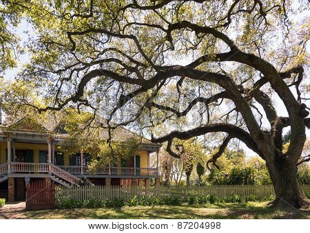 Laura Plantation,  New Orlean
