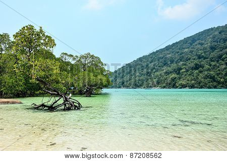 The Bay Of Surin Island In Andaman