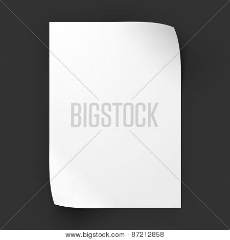 Page with curved corners. Business mockup template.