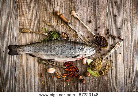 fresh trout with spices and seasonings on a dark table