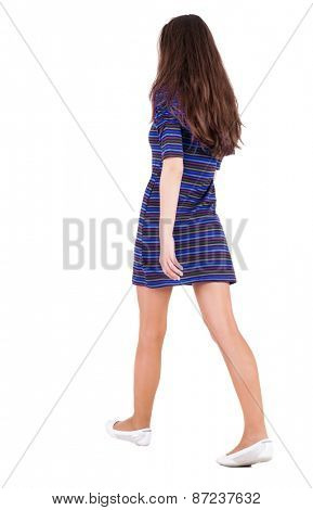 back view of walking  woman in dress . beautiful brunette girl in motion.  backside view of person.  Rear view people collection. Isolated over white background.