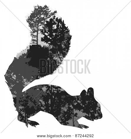 illustration with squirrel silhouette from trees branches isolated on white background