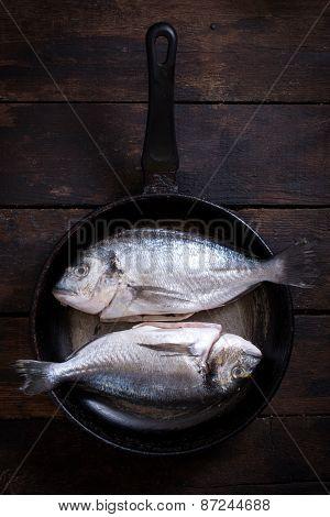 Gilthead Fish In Pan