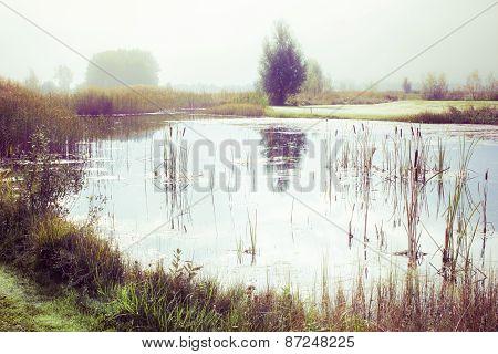 Vintage Pond