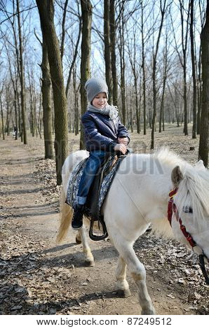 Smiling Boy Riding A White Pony Trail In The Park In Spring