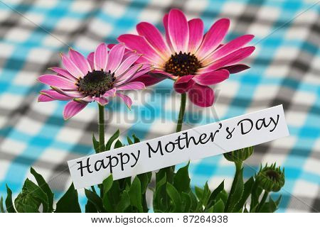 Happy Mother's Day card with pink gerbera daisies