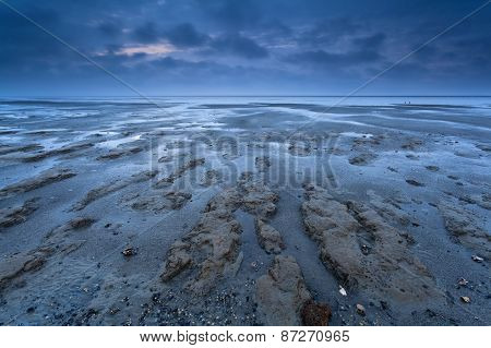 Coast Texture At Low Tide