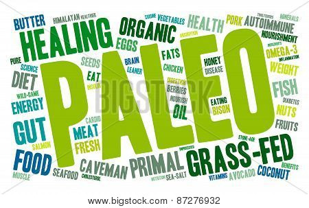 Paleo Word Cloud