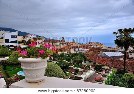 View The Town Of La Orotava