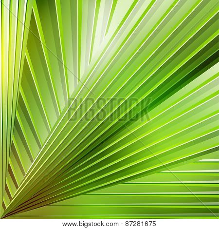 Abstract Striped Background In Green Colors