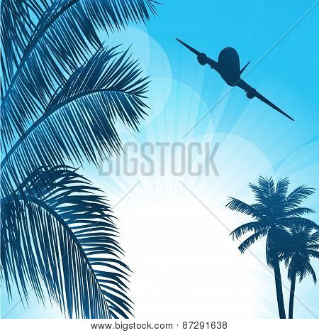 Summer Background With Palms And Airplane