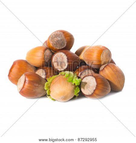 Pile Of Filbert Nuts
