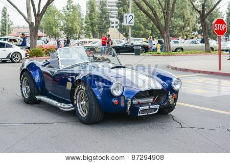 Shelby Cobra Classic Car On Display