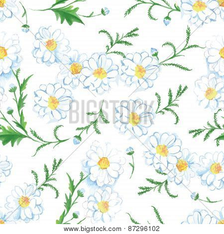Chamomile Flowers Seamless Vector Print