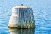 stock photo of ship  - Concrete ship guard with wooden planks to protect the incoming ships from being damaged - JPG