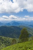 picture of naturel  - View of the Pyrenees at Boussenac in France - JPG