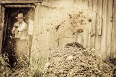 pic of excrement  - Farmer Shoveling the Horse Manure out of the Barn - JPG