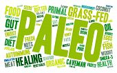 image of fat-guts  - Paleo word cloud on a white background - JPG