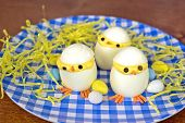 foto of easter candy  - Deviled eggs chicks for Easter with egg candy on blue and white checkered plate - JPG