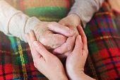 stock photo of granddaughter  - Unrecognizable grandmother and her granddaughter holding hands - JPG