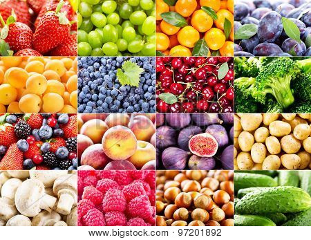 collage with various fruits and vegetables