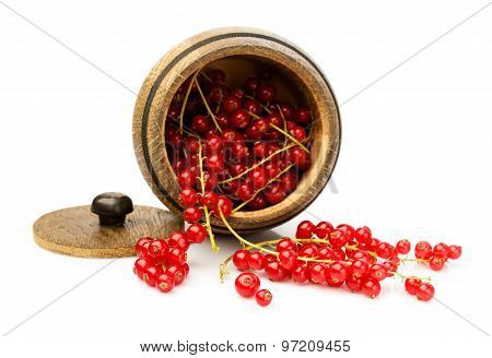 Red Currant In A Wooden Barrel