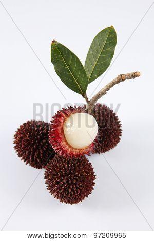 pulasan  thick skin or wild rambutan on the white background
