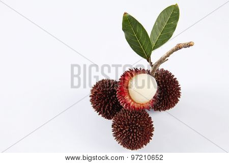 pulasan  thick skin or wild rambutan on the white background