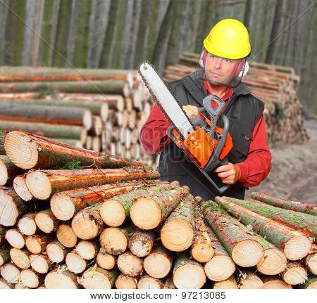 The Lumberjack with chain saw working in a forest.
