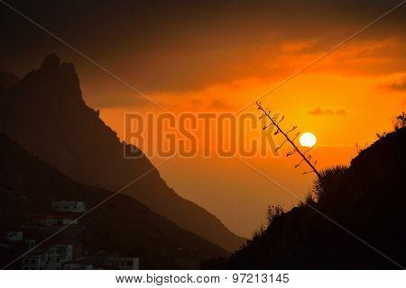 beautiful sunset in Tenerife, Spain