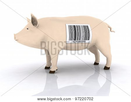 Pig With Bar Code