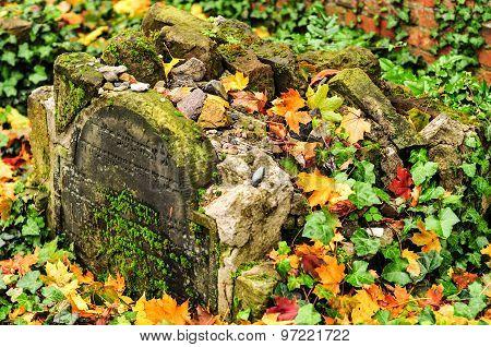 Grosse Hamburger Strasse Jewish Cemetery
