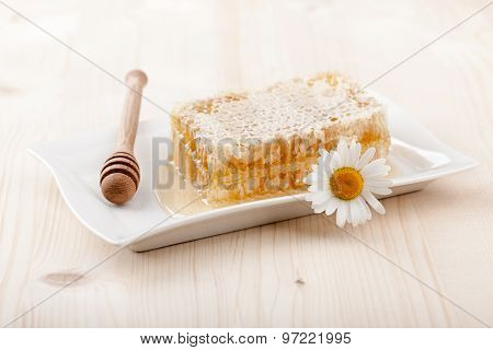 Honey Comb And Chamomile Flower