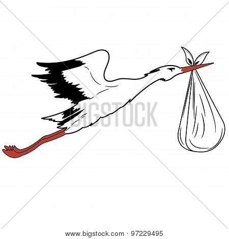 White Stork In Flight Delivering A Newborn .