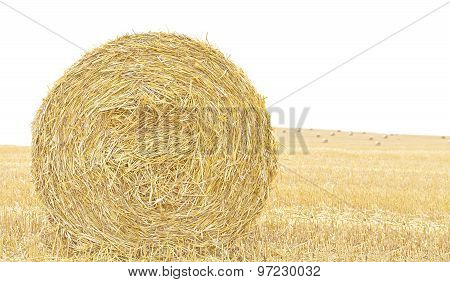 Hay Bale Isolated Close Up Background With Space For Text.